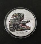 Серебро.1 унция. 2017. Морской Крокодил - Замечательные рептилии, фото №3