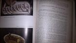 Современная кухня 3000 рецептов, фото №5