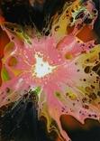 Картина/ живопис/ абстракція Fluid Art #71 acrylic, фото №9