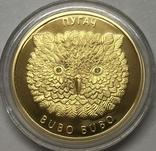 50 рублей 2010 года. Пугач. Белоруссия., фото №2