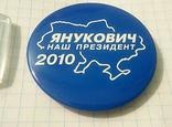 Брелок и значок Партии регионов., фото №4