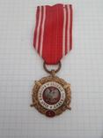 Медаль Вооруженные силы на службе Родине Польша, фото №2