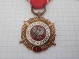 Медаль Вооруженные силы на службе Родине Польша, фото №3