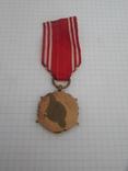 Медаль Вооруженные силы на службе Родине Польша, фото №7