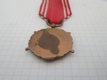 Медаль Вооруженные силы на службе Родине Польша, фото №9