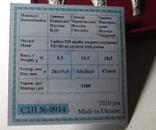 Набор монет серебро гривня київська чернігівська новгородська футляр 2020 набор Копии, фото №7