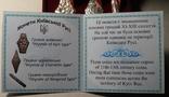 Набор монет гривна киевская черниговская новгородская футляр серебро копия тип 2, фото №5