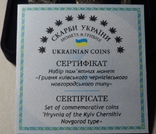 Набір монет гривня Київська Чернігівська Новгородська футляр серебро копия тип 2, фото №8