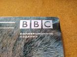 """DVD """"Загадочные Кошки"""" BBC коллекционное издание 2006 г., фото №3"""