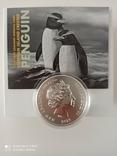 """New Zealand Срібна монета """"Пінгвін чубатий"""" 2020 1 унція, фото №3"""