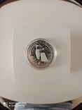 """New Zealand Срібна монета """"Пінгвін чубатий"""" 2020 1 унція, фото №6"""