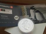 """New Zealand Срібна монета """"Пінгвін чубатий"""" 2020 1 унція, фото №8"""