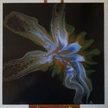Картина/ живопис/ абстракція Fluid Art #81 acrylic, фото №5
