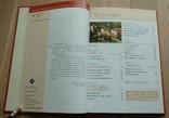 Чай. Издательство Жигульского. 2002, фото №5