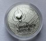 1-я монета в серии Красноспинный паук Австралия лот 2, фото №2