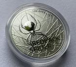1-я монета в серии Красноспинный паук Австралия лот 2, фото №5