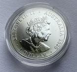 1-я монета в серии Красноспинный паук Австралия лот 2, фото №9