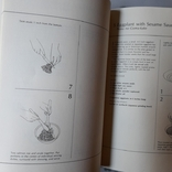 Методика приготування японських блюд (англ. мова), фото №7