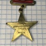 Герой социалистического труда. Копия., фото №5