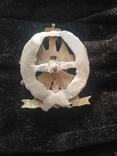 Полковой знак лейб гвардии московского полка, копия, фото №3
