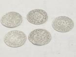 Монеты короля Сигизмунда 3 номиналом полторак, фото №2