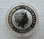 1 доллар 2012 года Кукабарра Австралия (7), фото №3