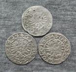 Коронные гроши 1600-х годов. Сиг. ІІІ Ваза ( 3 штуки )., фото №3