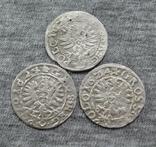 Коронные гроши 1600-х годов. Сиг. ІІІ Ваза ( 3 штуки )., фото №5