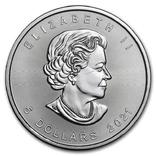 5 Долларов 2021 Кленовый Лист (Серебро 0.999, 31.1г) 1oz, Канада Унция, фото №3