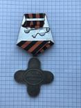 Крест за взятие Измаила. Копия, фото №6