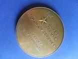 Медаль Слава героям Молодой гвардии, фото №6