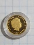 Монета 5 долларов Кенгуру 2009 год Австралия, фото №3