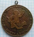 Медаль Хоккей золотая шайба всероссийские финальные игры им. Тарасова, фото №2