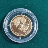 Монета - Калина червона , 2010 год, фото №4