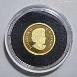 50 центов 2014 год, 9999 Canada, фото №4