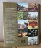 """""""Путь чая"""" Издательство Жигульского (подарочное оформление) 2006 г., фото №4"""
