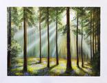 Картина, Вечер в летнем лесу, 55х70 см. Живопись на холсте, фото №2