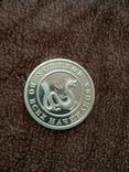 Монета на удачу., фото №8
