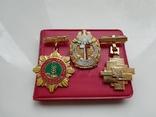Три польских знака, фото №2