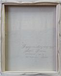 Картина, Берези на квітучому лузі, 25х30 см. Живопис на полотні, фото №5