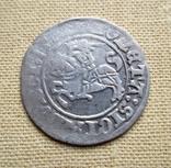 Полугрош # 1. Сигізмунд I Старий, фото №2