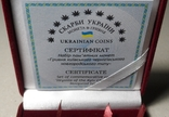 Набор монет серебро гривня київська чернігівська новгородська футляр 2020 набор тип 1, фото №6