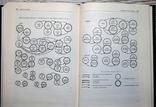 В.В.Уздеников Монеты России 1986 Москва 495 стр. 70000 экз., фото №5