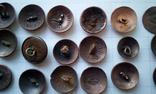 Пуговицы орлянки 40 шт., фото №7