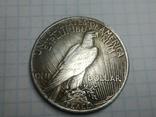 Доллар 1922 копия, фото №3