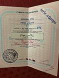 Картина GIANCARLO VITALI 1981 г. документы (Сертификат). Серебро 800 Италия., фото №7