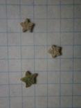Звёздочки (разновидность морской лилии) 3шт. №6, фото №4