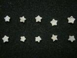 Звёздочки (разновидность морской лилии) 10шт. №9, фото №2
