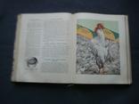 Книга о вкусной и здоровой пище 1964г, фото №6