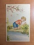 Хлопчик ловить жабку, фото №2